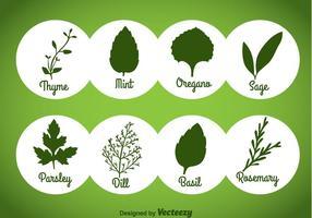 Örter och kryddor gröna ikoner vektor