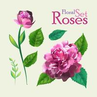 uppsättning botaniska rosblommor.