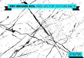 Trockene Erodierte Bodenfrei Vektor Textur Vol. 3