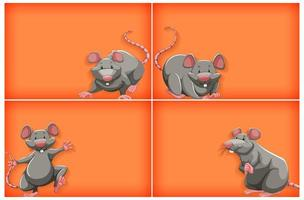 orange bakgrund med grå mus vektor