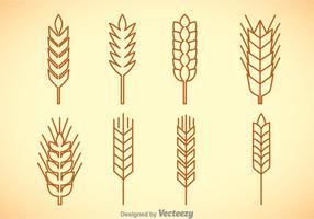 Weizen Stalk Vektor Sets