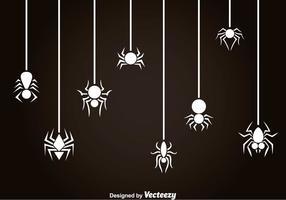 Vit Spindel Och Tarantula Vektor