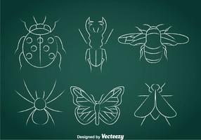 Insekten Kreide Drawn Icons vektor