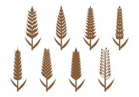 Weizenohren Icon vektor