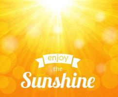 Gratis glänsande Sunburst Vector