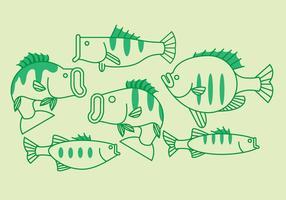 Vektor bass fisk