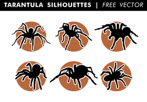 Tarantula Silhouettes Gratis Vector