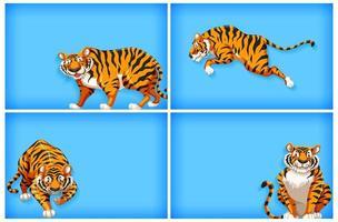 bakgrundsuppsättning med tecknade tigrar på blått