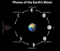 Diagramm, das die Phasen des Erdmondes zeigt
