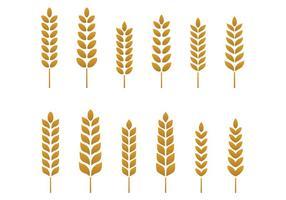 Freier Weizen-Vektor vektor
