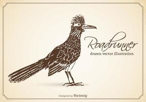 Gratis Vektor Drawn Roadrunner Illustration