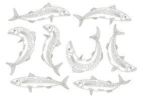 Makrelen Ikonen vektor