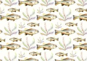 Gratis Vector Akvarell Bass Fisk Bakgrund