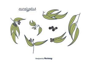 Eukalyptus-Vektor vektor