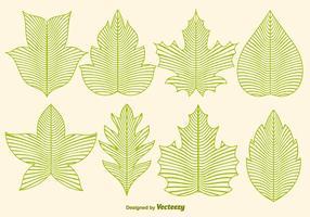 Vektor Leaf Ikoner I Linjestil