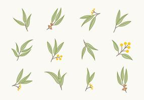 Gratis Flat Eucalyptus Ikoner vektor