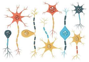 Gratis Neuron Vektor