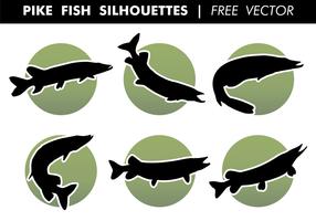 Gädda Fisk Silhuetter Gratis Vector