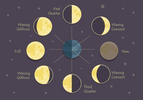Moonfasvektor vektor