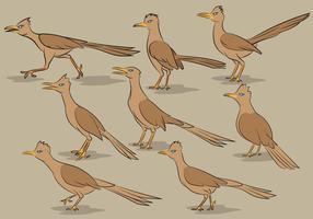 Roadrunner Vogel Cartoon Vektoren
