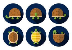 Vektor Schildkröte