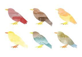 Vektor vattenfärg fågel samling