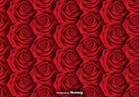Vektor Roses Bakgrund - SEAMLESS PATTERN