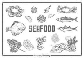Freie Hand gezeichnete Meeresfrüchte Vektor Set
