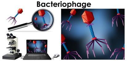 objekt för virusbakteriofag