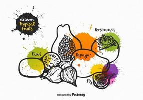 Gratis Vector Drawn Tropical Fruits