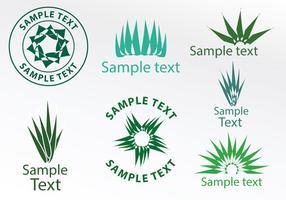 Logos maguey vektor