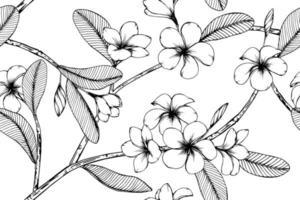 Plumeria Hand gezeichnetes botanisches nahtloses Muster