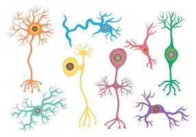 Kostenlose Neuron Icons Vektor