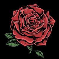 handritad röd ros på svart vektor