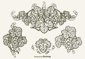 Gratis Drawn Bunch Of Grapes Vector Design