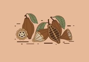 Kakaobohnen Vektor