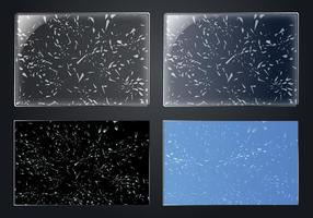 Bruten skärm sindow glas
