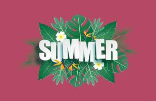 hej sommar banner med tropiska blad vektor