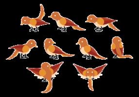 Nightingale Cartoon Vektor