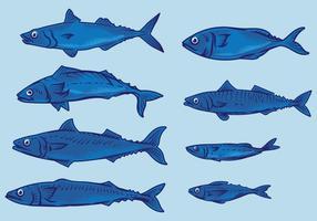 Makrill Fisk vektor