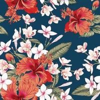 rosa frangipani blommor blå bakgrund. vektor