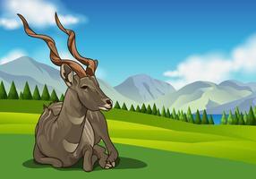 Kudu Vektor auf rollenden Hügeln