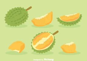 Durian fruktvektor