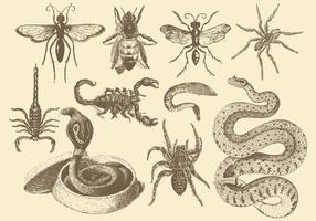Giftiga djur vektor