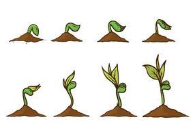 Gratis växa upp växtvektor