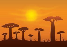 Gratis Baobab Vector Bakgrund