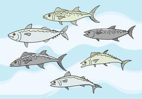 Makrellvektor vektor