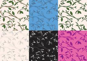 Blätter Textur Set