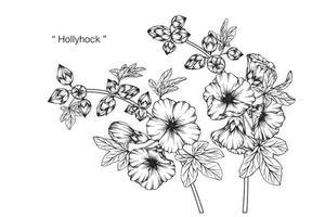 Hand gezeichnete botanische Stockrose Blume und Blätter vektor
