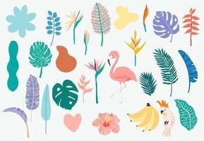 sommarföremål inklusive flamingo, banan, papegoja och blomma vektor